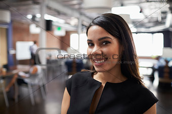 Portrait Of Businesswoman In Modern Open Plan Office
