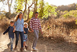 Young white family walking on a path in sunlight, front view