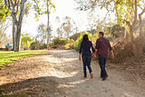 Mixed race couple walking in a park holding hands, back view