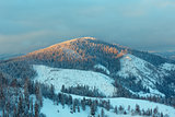 Evening winter Ukrainian Carpathian Mountains landscape.