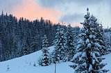 Sunset winter Ukrainian Carpathian Mountains landscape.