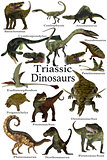 Triassic Dinosaurs