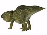 Udanoceratops Dinosaur Tail