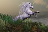 White Unicorn on Mountain