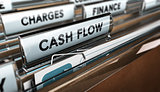 Company Cash Flow Statements