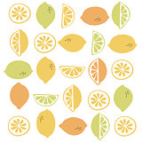Seamless vector pattern with citrus fruit clices