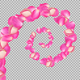 Spiral of flying rose petals. Realistic vector pink big petals on transparent background.