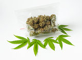 cannabis marijunana medicine dose bag green leaves