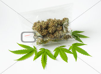 cannabis marijunana medicine dose bag green leaves