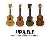 Ukulele vector illustration on white backgroiund