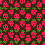 Seamless raspberry background brown pattern