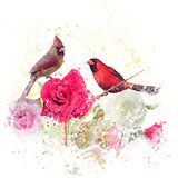 Male and Female Northern Cardinals watercolor