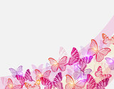 Pink and red butterflies