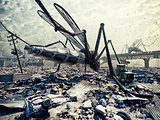 Giant insects and the city