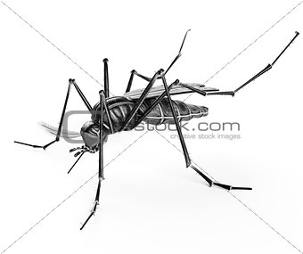 Black isolated mosquito