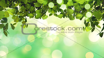 3D leaves on defocussed background