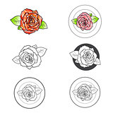 Rose Flower Different Logo Design Set