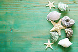 vacation concept - starfish and seashells on a wooden background