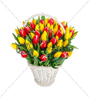 Bouquet of tulips