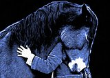 loving horse and a girl, girl hugging a horse. computer painting version.