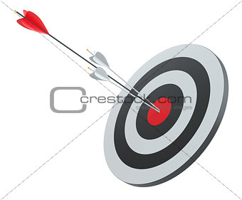Arrow hit the center of red target
