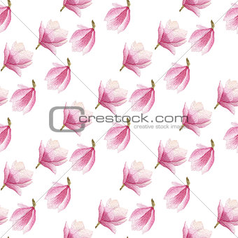 watercolor blooming magnolia seamless pattern isolated on white background.