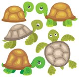 Stylized turtles theme image 1