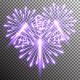 isolated realistic vector fireworks