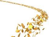 3d illustration of flying golden coins flock.