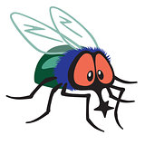 cartoon fly insect