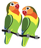 cartoon Fischer lovebirds