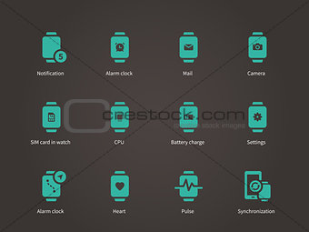 Smart watch settings, pulse, camera and SIM card icons set.
