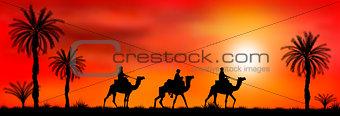 Caravan of camels at sunset