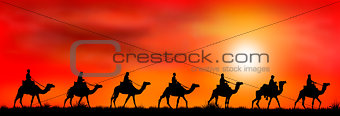 Caravan of camels at sunset 1