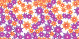 orange and violet flowers