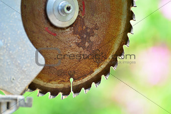 Circular saw on background of nature in summer