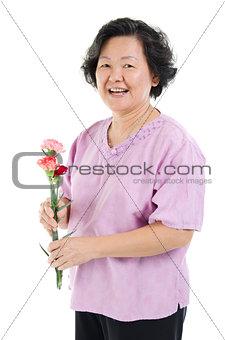 Carnation flower as gift