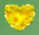 Yellow mimosa flowers heart shape on green background