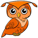 owl bird cartoon animal