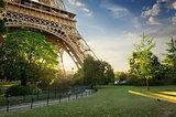 Lawn near Eiffel Tower