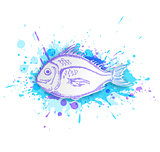 Fish on a blue background