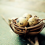 Easter eggs and nest on wooden background