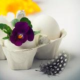 Easter egg in birds nest with spring flowers