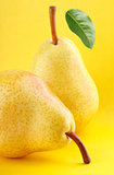 yellow pear fruits with green pear leaf on yellow background