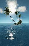 sea tropical island palm sun