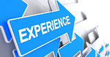 Experience - Text on Blue Arrow. 3D.