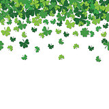 Seamless pattern with shamrock clover falling leaves isolated on white background.