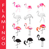 Flamingo birds vector set. Cartoon, outline and silhouette.