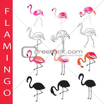 Flamingo birds vector set. Cartoon, outline and silhouette.
