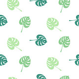 Monstera tropic plant simple leaves seamless pattern.